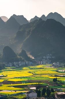 Цветочное поле и деревни рапса в национальном геологическом парке ваньфэнлинь (лес десятки тысяч пиков), китай