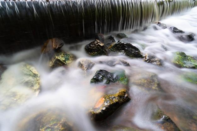 葉のある小さな滝