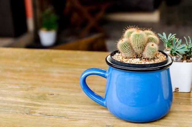 コーヒーショップで木製のテーブルの上にサボテン