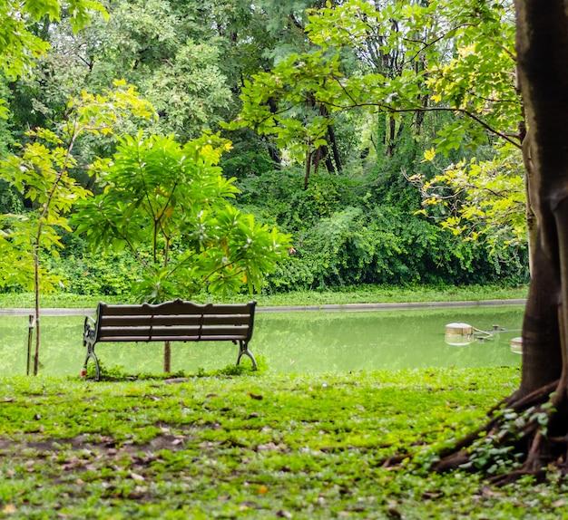 Одинокий скамейка и вид на озеро сада в центре столицы таиланда