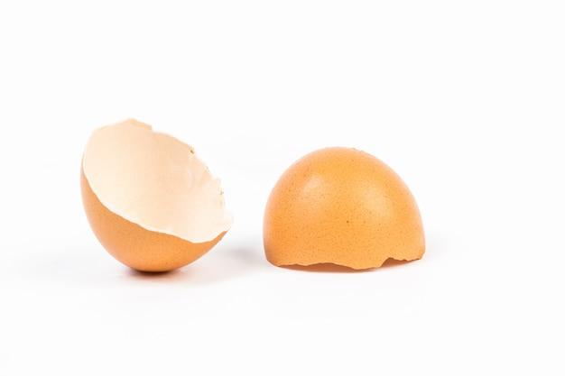 白い背景の上の卵の殻