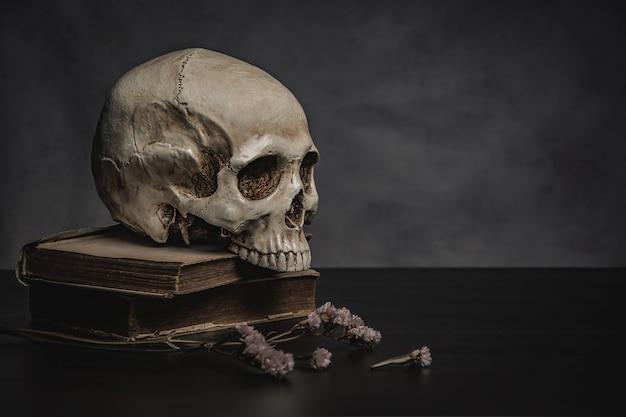 テーブルの上の頭蓋骨