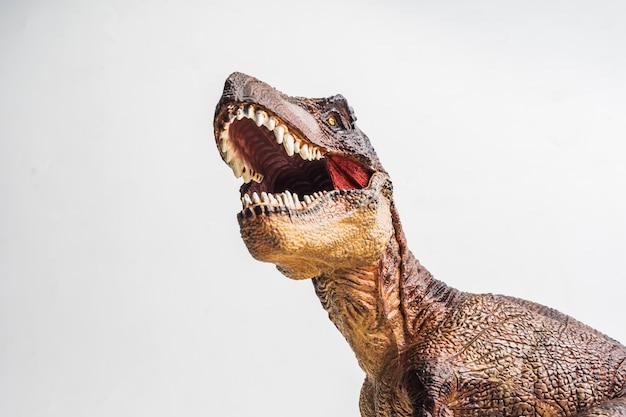 白い背景の上のティラノサウルス
