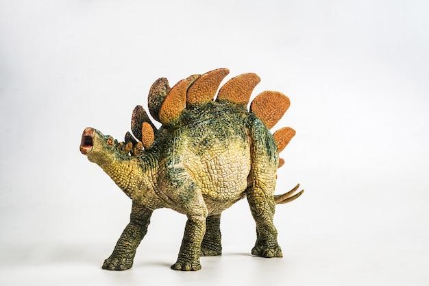 白い背景の上のステゴサウルス