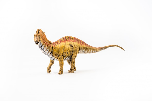 アマルガサウルス、白い背景の上の恐竜
