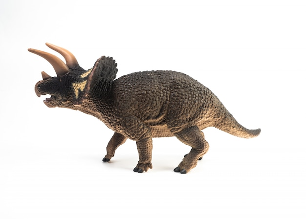 白い背景の上のトリケラトプス恐竜