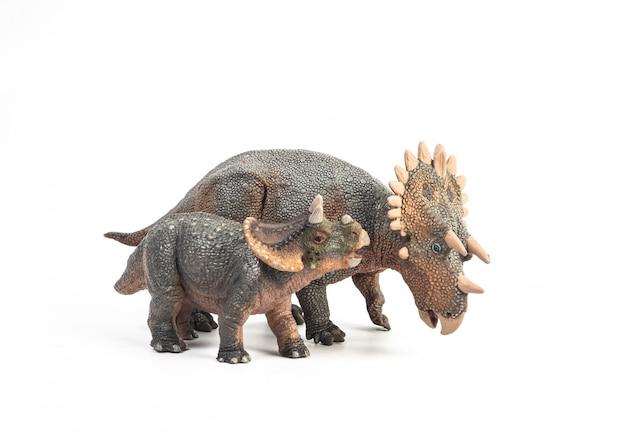 レガリケラトプス恐竜