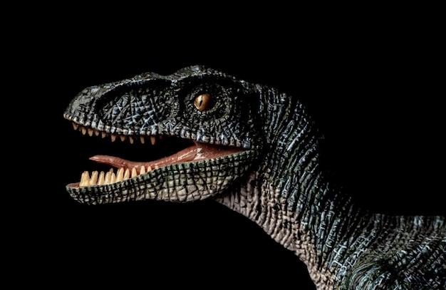 黒い背景にヴェロキラプトル恐竜