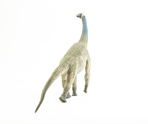 アトラサウルス、恐竜。