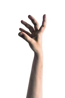 怖いゾンビの手は、白い背景に