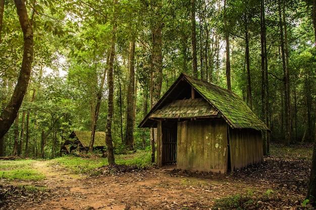 森の古い木製コテージ