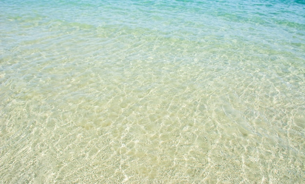きれいな海水の写真から白い砂が見えます。