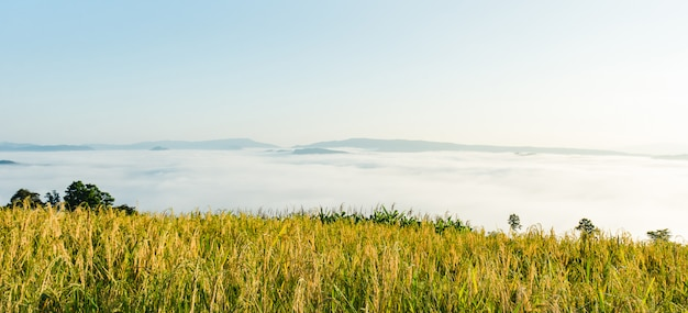 朝の日の出と山の美しい風景。