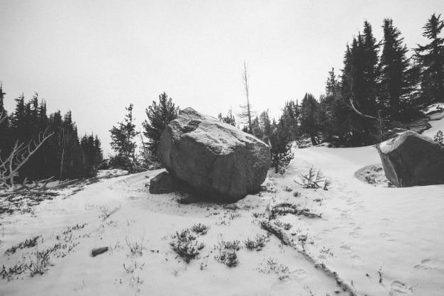 雪の中でロック