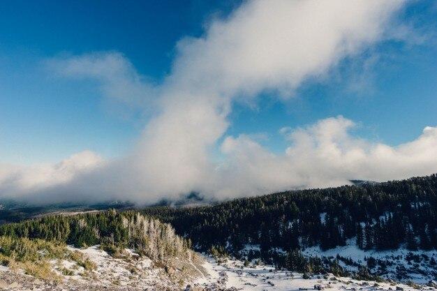森上記の霧