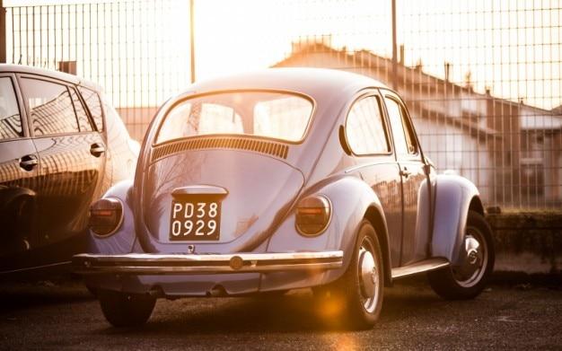 日光の下でクラシックカー