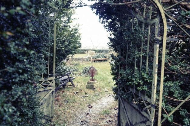 放棄された庭