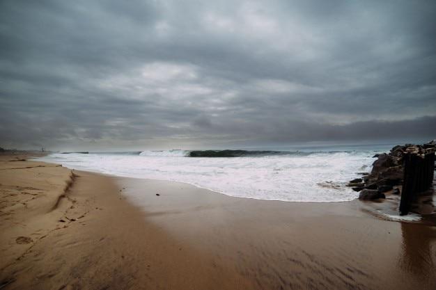 海の海岸の風景