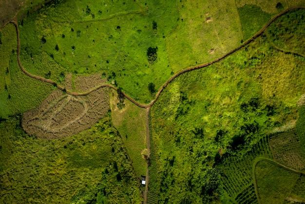 高角度のビュー画像表面と農業地域のパス