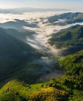 山霧チェンライタイの朝の風景自然ビュー