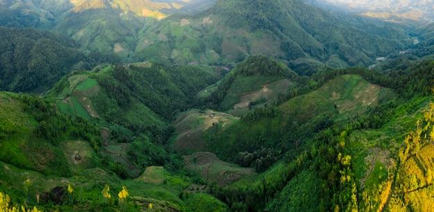 梅雨の谷と緑の山