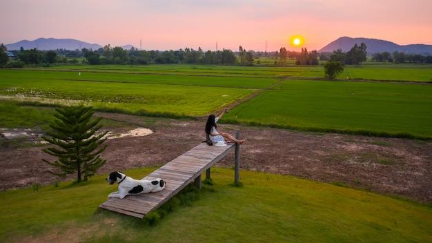 Сумерки пейзаж зеленого риса сельскохозяйственного района и красивые женщины селфи на мосту и собака переднего плана