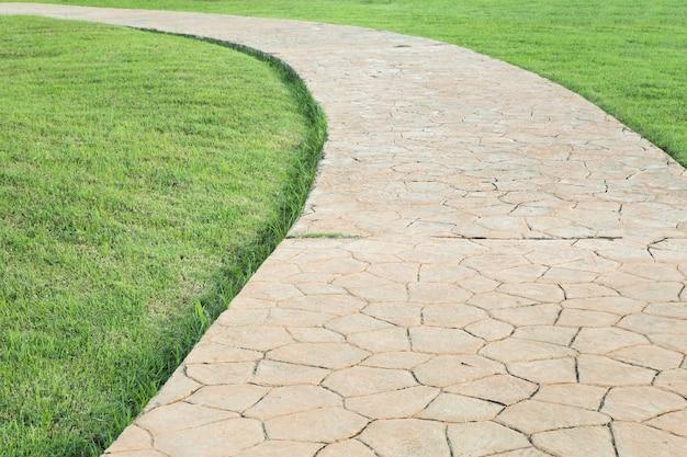 Каменный путь в пышном зеленом парке.