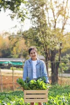 Юные садоводы-органики собирают овощи в деревянных ящиках, чтобы доставить клиентам по утрам.
