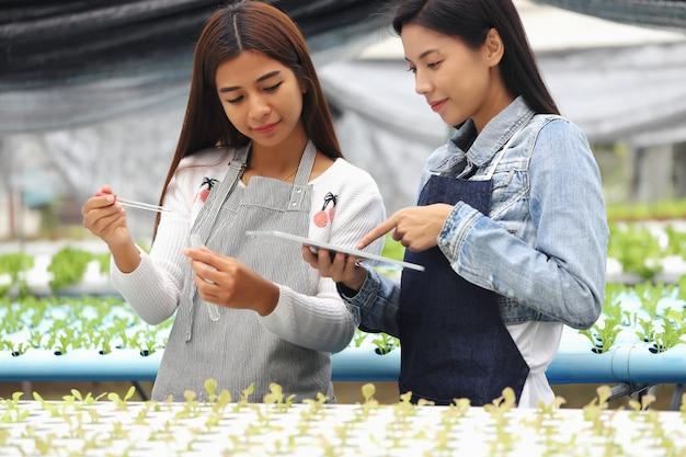 養液栽培の野菜畑と彼女のコンサルタントを所有している女性。彼らは野菜畑で水の状態をテストしています。