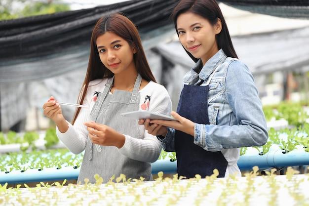 Женщина, которая владеет гидропонной овощной фермой и ее консультанты. они проверяют водные условия на овощных участках.