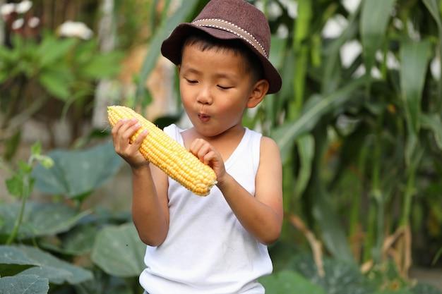 アジアの少年は、彼が植えたトウモロコシの収穫に興奮しています。教室外での学習の概念