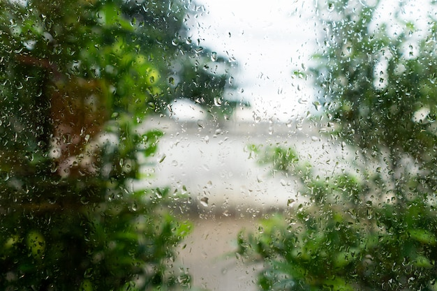 Капли дождевой воды на окне после дождя в кафе с листьями и растениями, абстрактный фон
