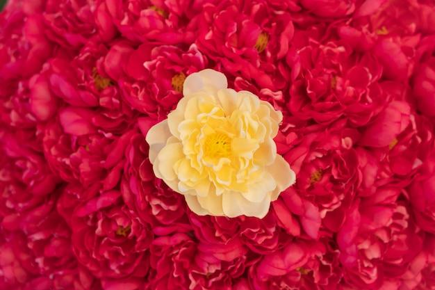 赤いバラの花束の分野で甘い黄色いバラ