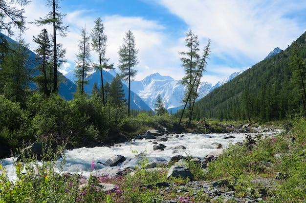 流れる森山川。ベルーカ国立公園のアケム川。