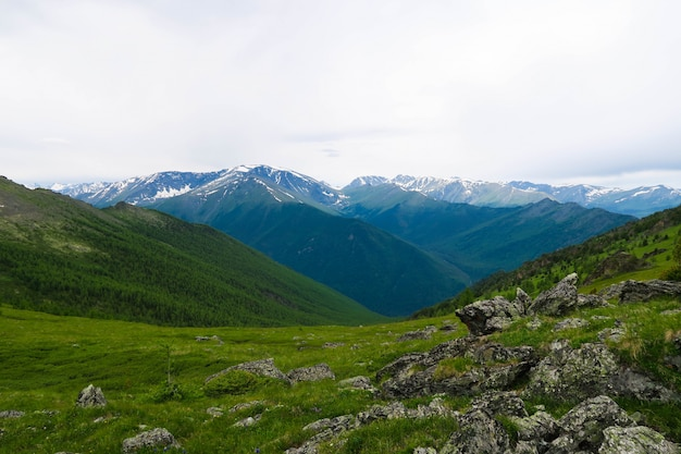 山の尾根の美しい景色。アルタイ山脈、ロシア