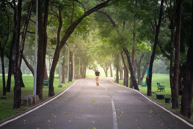 バンコクの日陰の緑の木々の公園の道。人々がリラックスして運動する場所。