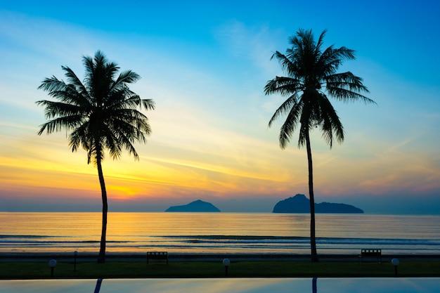 椰子の木のシルエットは再び海の日の出