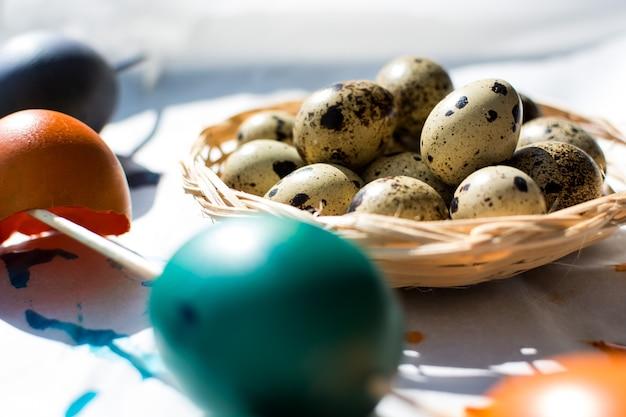 Пасхальный перепелов и цветных яиц