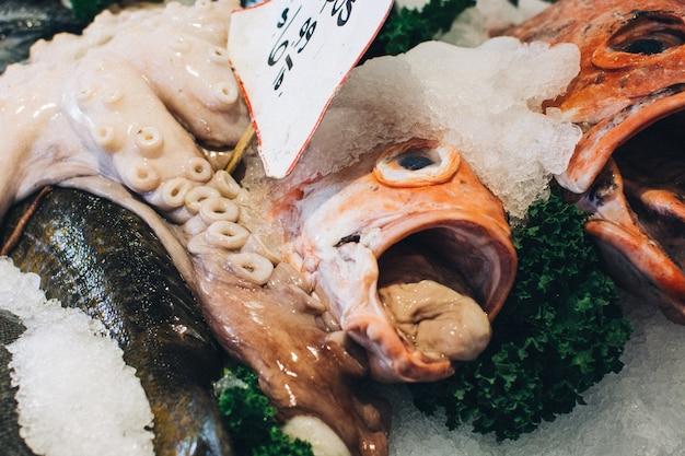 魚の頭が近づく