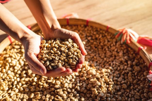 乾燥コーヒー豆