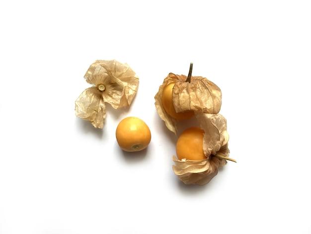 ケープグーズベリー、白で隔離サイサリス