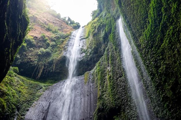 マダカリプラ滝東ジャワ
