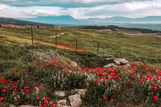 古代ヒエラポリス、デニズリのパムッカレトランバンタープール