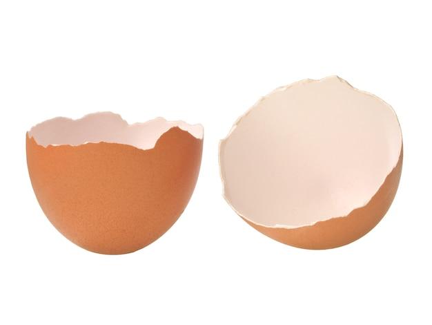 白い背景上に分離されて壊れた空の卵の殻