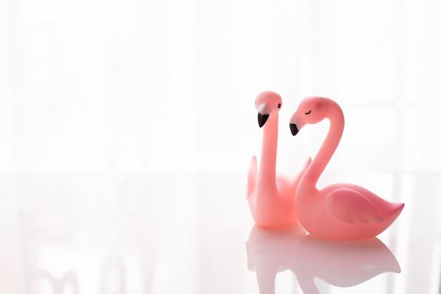 孤立した白い背景、バレンタインデーの休日のお祝いに愛のカップルフラミンゴ