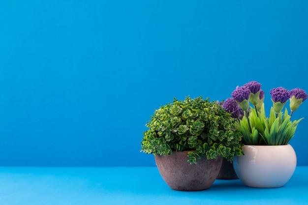 Цветочные горшки на синем фоне с копией пространства.