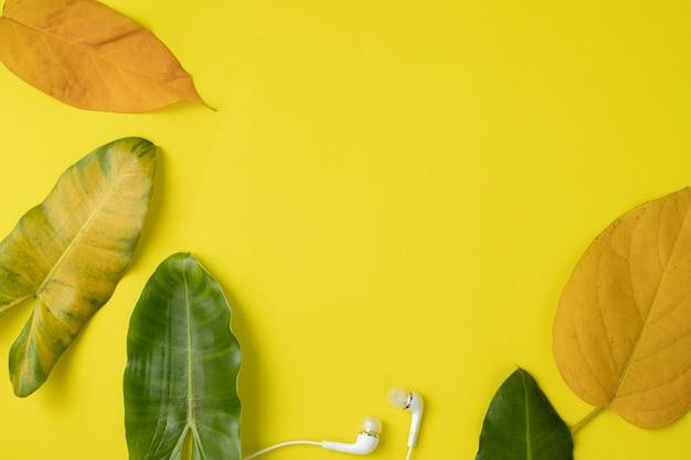 Листья кадр с копией пространства на желтом.