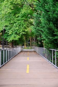緑の森を渡るセメント歩道