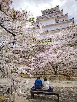 敦賀城、会津若松城、桜の木、福島県、日本。