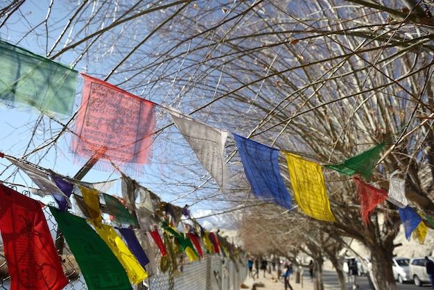 シェイ宮殿、レー、ラダック、インドの近くの祈りの旗
